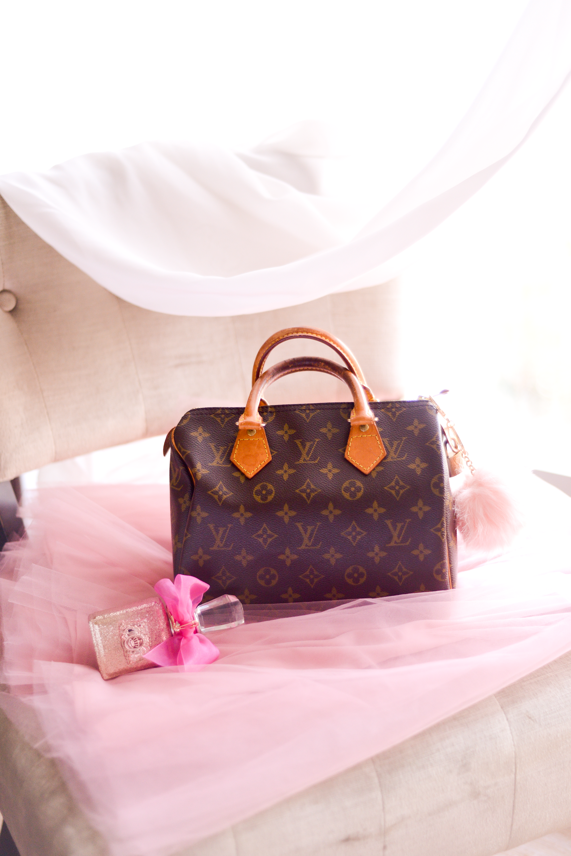 Tips For Budgeting For The Purse Of Your Dreams